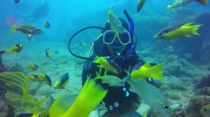diving-1186626