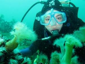 diving-975510