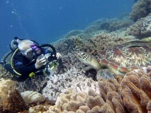 underwater-1175410